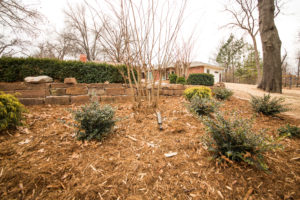 McKinney Texas Irrigation System