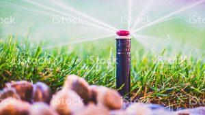 sprinkler spraying water